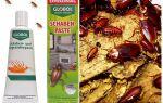 Засіб Глобал від тарганів: гель, паста, відгуки і ціна