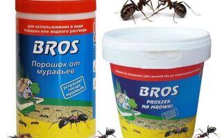 Порошок Bros від мурах — відгуки та інструкція із застосування