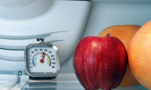 Яка повинна бути температура в холодильнику і морозильній камері: оптимальна, робоча, максимальна, як виставити, налаштувати