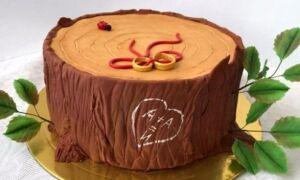 Торт на дерев'яне весілля: вибираємо торт з мастики і крему на річницю 5 років шлюбу у вигляді дерева
