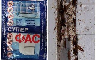 Засоби фас від тарганів — відгуки та інструкція із застосування